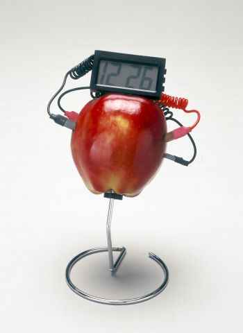 Fruit Clock.jpg