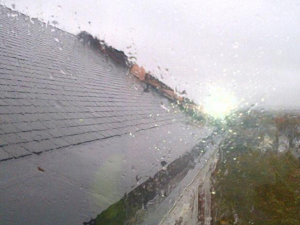 roof 4.jpeg