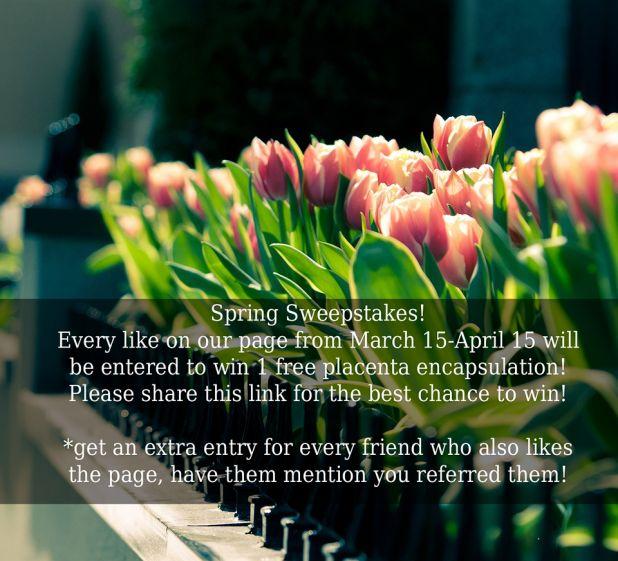 spring_giveaway_websize.jpg