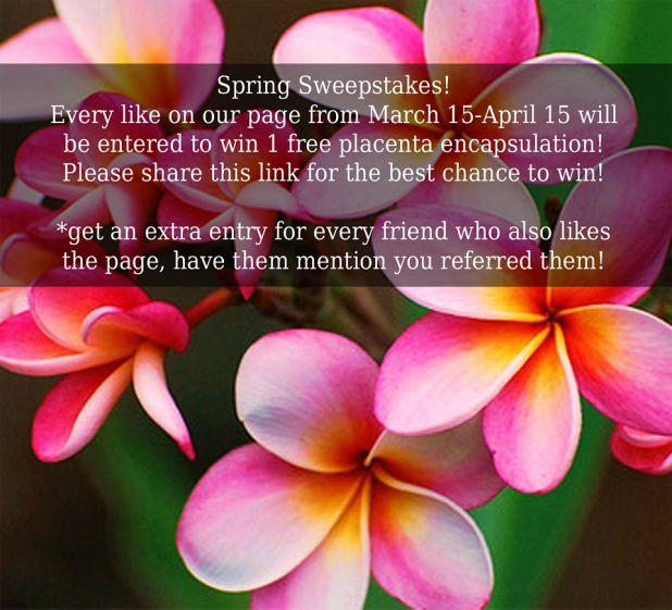 spring_giveaway_websize4.jpg