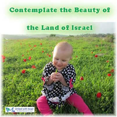 Israeli Child in a Field.jpg