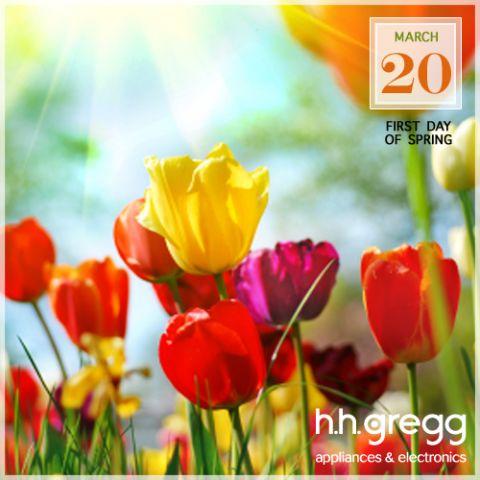 feb_hhg_spring.png