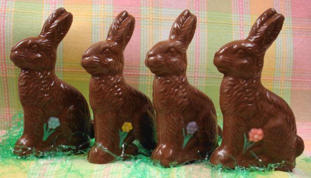 chocolate-bunny-with-flower.jpg
