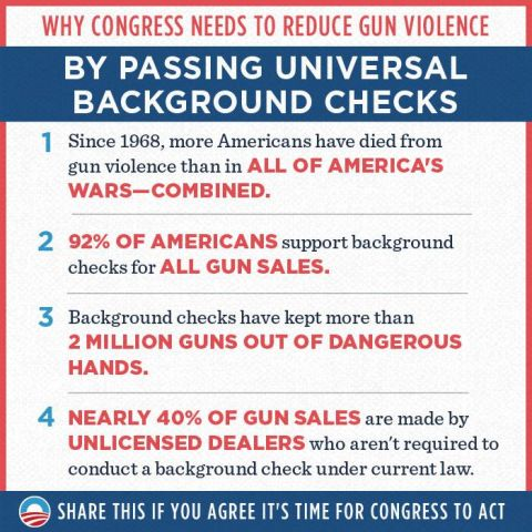 3.20.13 Background Checks Fact Graphic.jpg