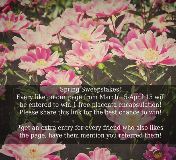 spring_giveaway_website2.jpg