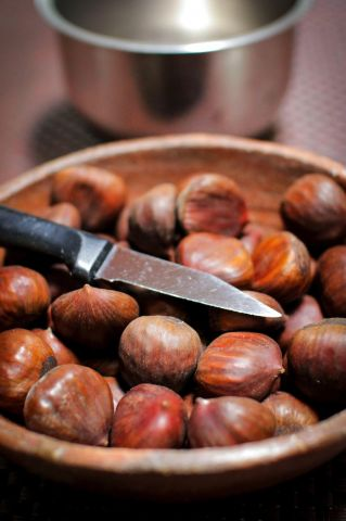 _MG_1087••chestnuts.jpg