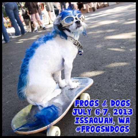 Frogs and Dogs 2013.jpg