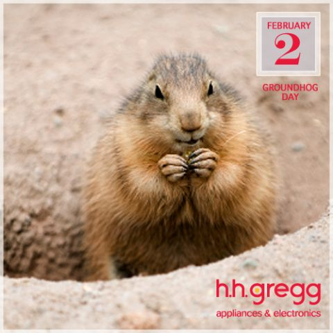 hhg_groundhog.png