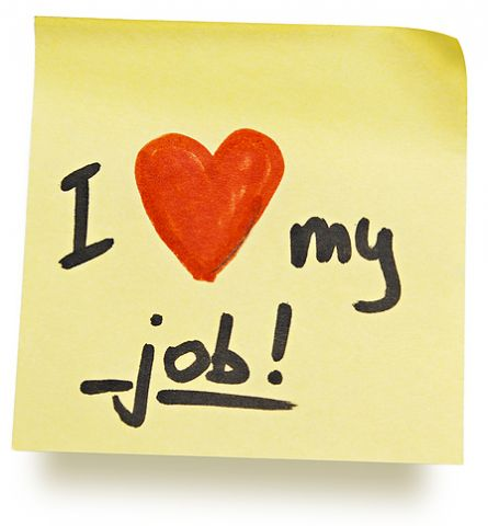 love your job.jpg