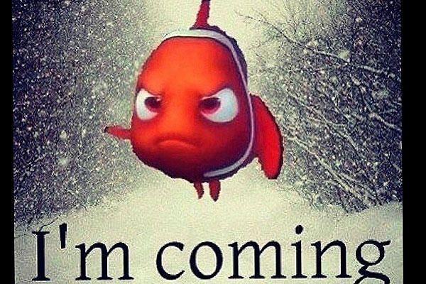 2-8-13-Nemo-cartoon_full_600.jpg
