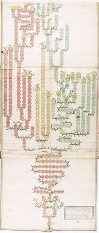 NatLibraryofIreland_Thomond Pedigree_NLI_GO_Ms_158.png