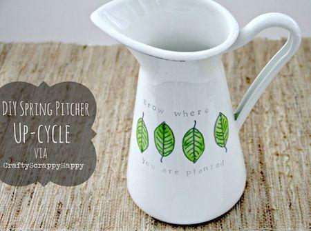 pitcher8-1024x762-1.jpg