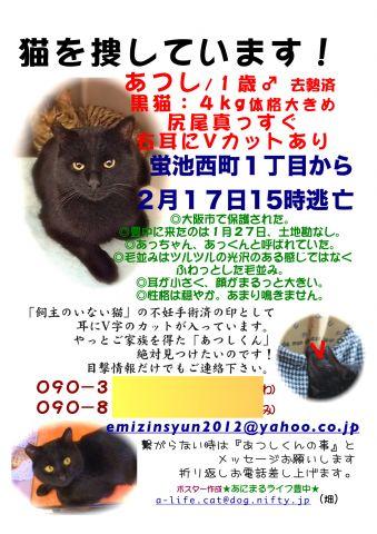 atsushi-maigo-flier.jpg
