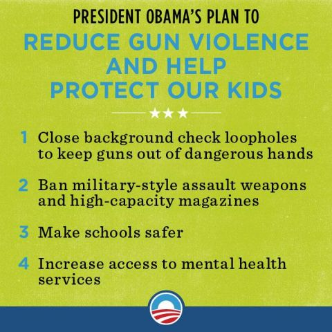 2.11.12 Plan to Reduce Gun Violence.jpg