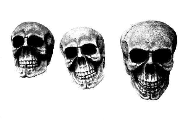 3 Skulz.jpg