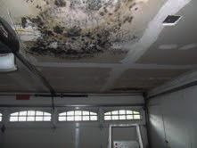Leak causing mold on ceiling in garage_edited.jpg