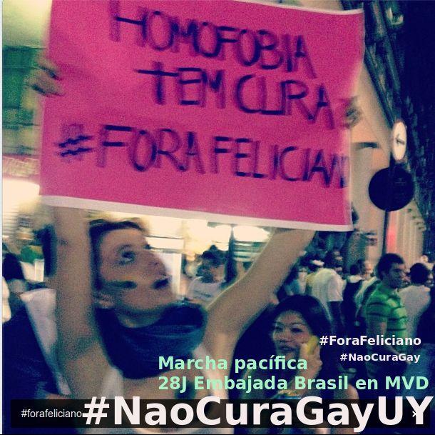 NaoCuraGayUY.png