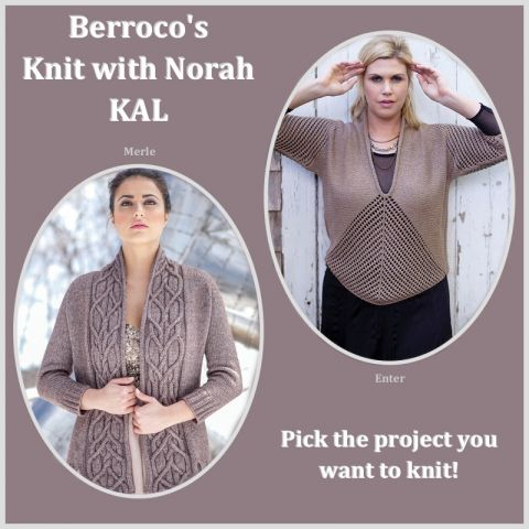 knit with norah kal.jpg