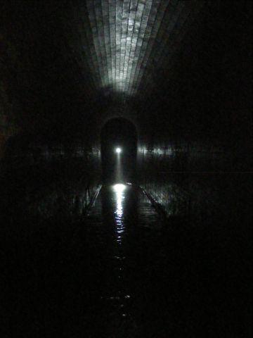 Fleet dark light.jpg