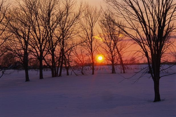 sunset snow_resize.jpg