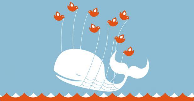 whale_error.gif