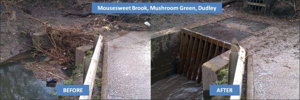 Mousesweet Brook, Mushroom Green, Dudley.png