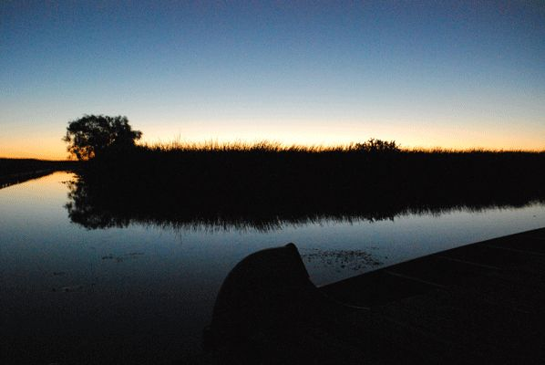 october-marsh-sunrise.gif