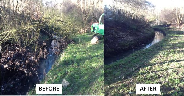 River Tame Transformation.jpg