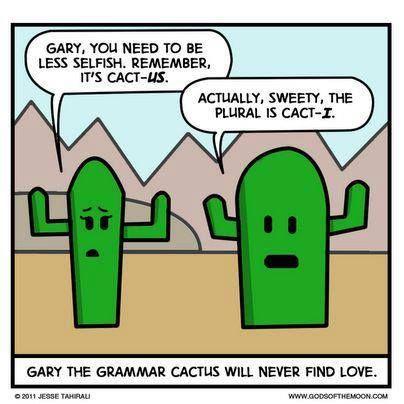 grammar cactus.jpg