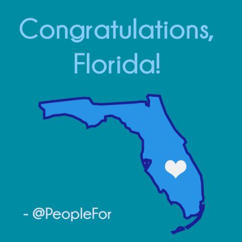 Florida_Marriage_Share_2.jpg