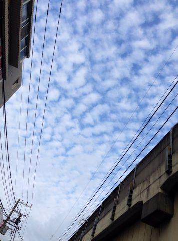 Photo on 2014-09-17 at 12:45.jpg