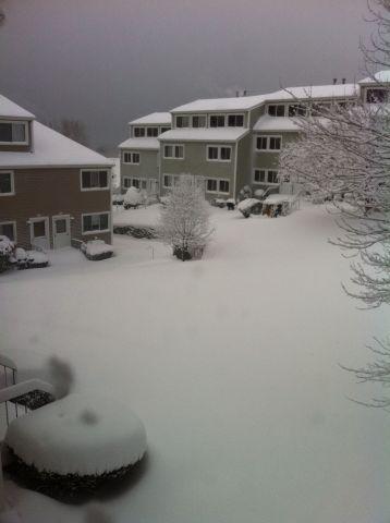 Photo on 2011-01-12 at 14:35.jpg