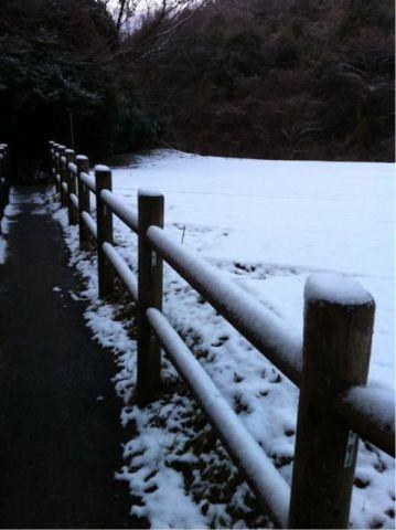 Photo on 2011-02-12 at 06:41.jpg