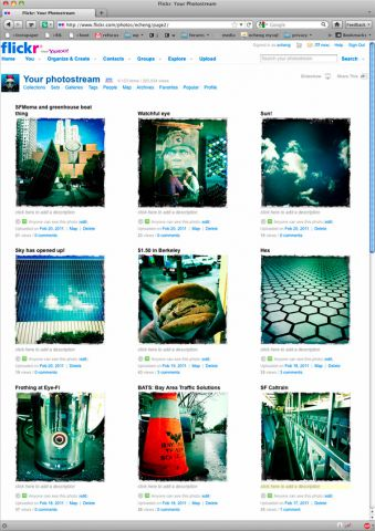 flickrfeed.jpg