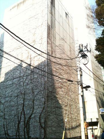 Photo on 2011-04-02 at 14:54.jpg