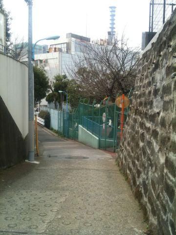 Photo on 2011-04-02 at 11:40.jpg