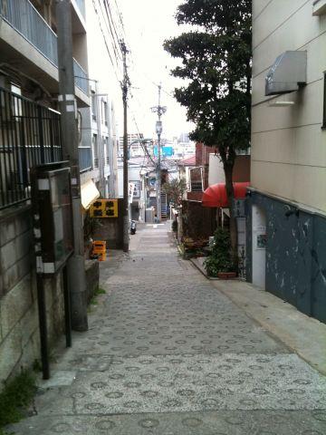 Photo on 2011-04-03 at 11:17.jpg