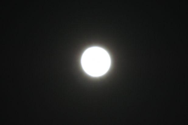 110317_02.jpg