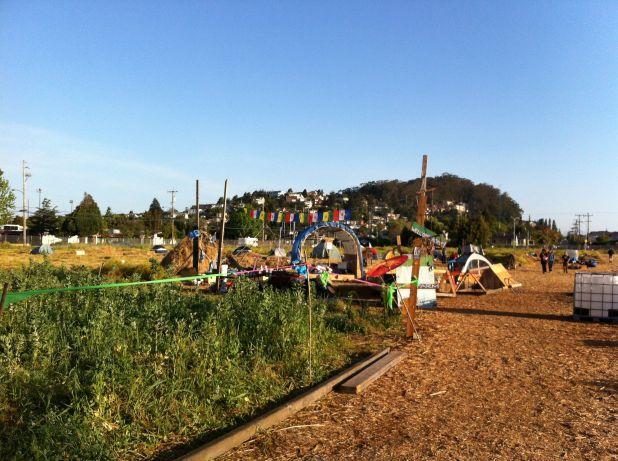 Photo on 2012-05-06 at 07:31.jpg