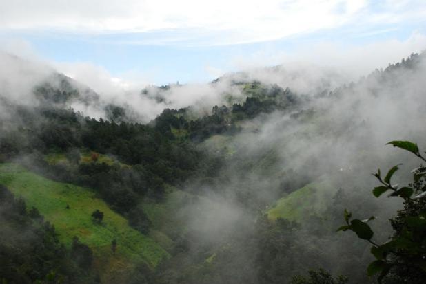 camino-copalita-caminata-sierra-oaxaca-5.jpg