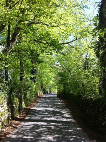Photo on 2012-05-11 at 16:15.jpg