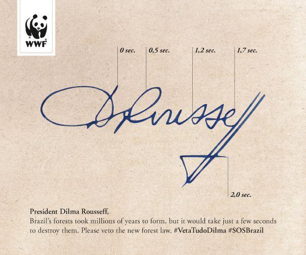 Brazil forest signature ad.jpg