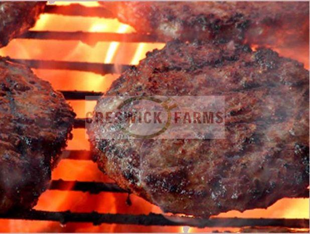 hamburger patties 1.jpg