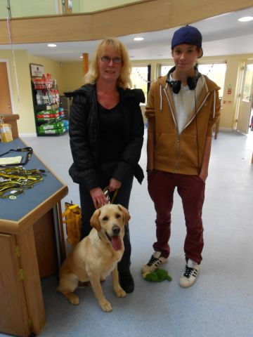 Bob the six year-old Labrador going home - Loughborough.jpg