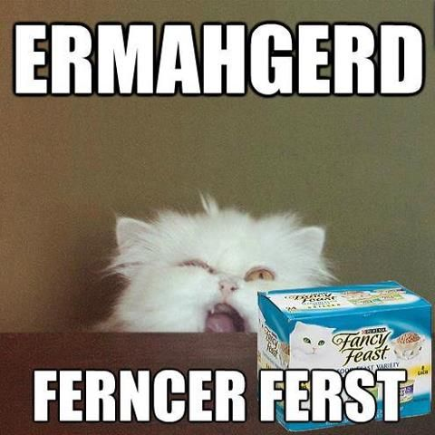 fancyfeast.jpg