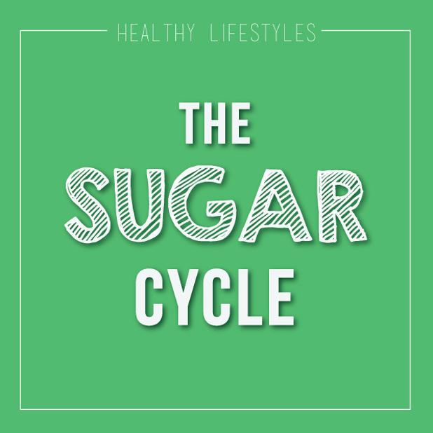 SUgar Cycle.jpg