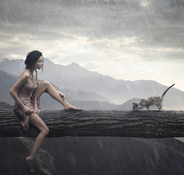 bigstock-Young-woman-and-cat-on-a-trunk-12122462.jpg
