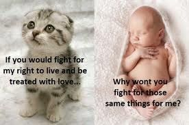 Fight for all Life.jpg