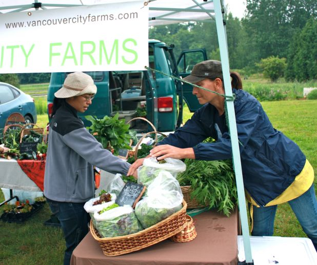 Metro Van City Farms.jpg