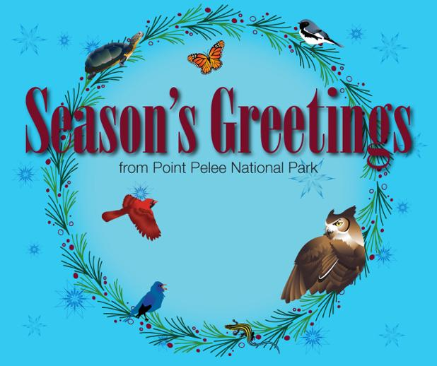 PPNP-seasons-greeting-FB-english.jpg